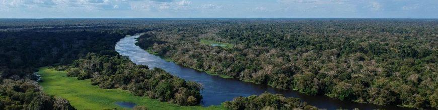 Material gráfico para difusión sobre la exhortación postsinodal «Querida Amazonía»