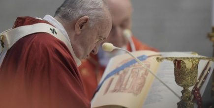 Homilía en la Santa Misa y Bendición de los Palios para los nuevos Arzobispos Metropolitanos en la Solemnidad de los Santos Pedro y Pablo, Apóstoles.