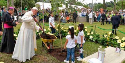 Mensaje del Papa Francisco para la Jornada Mundial de Oración por el cuidado de la Creación 2020